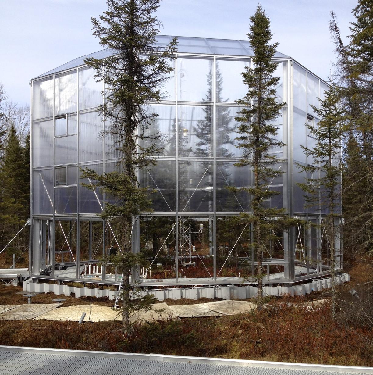Plot 19 enclosure