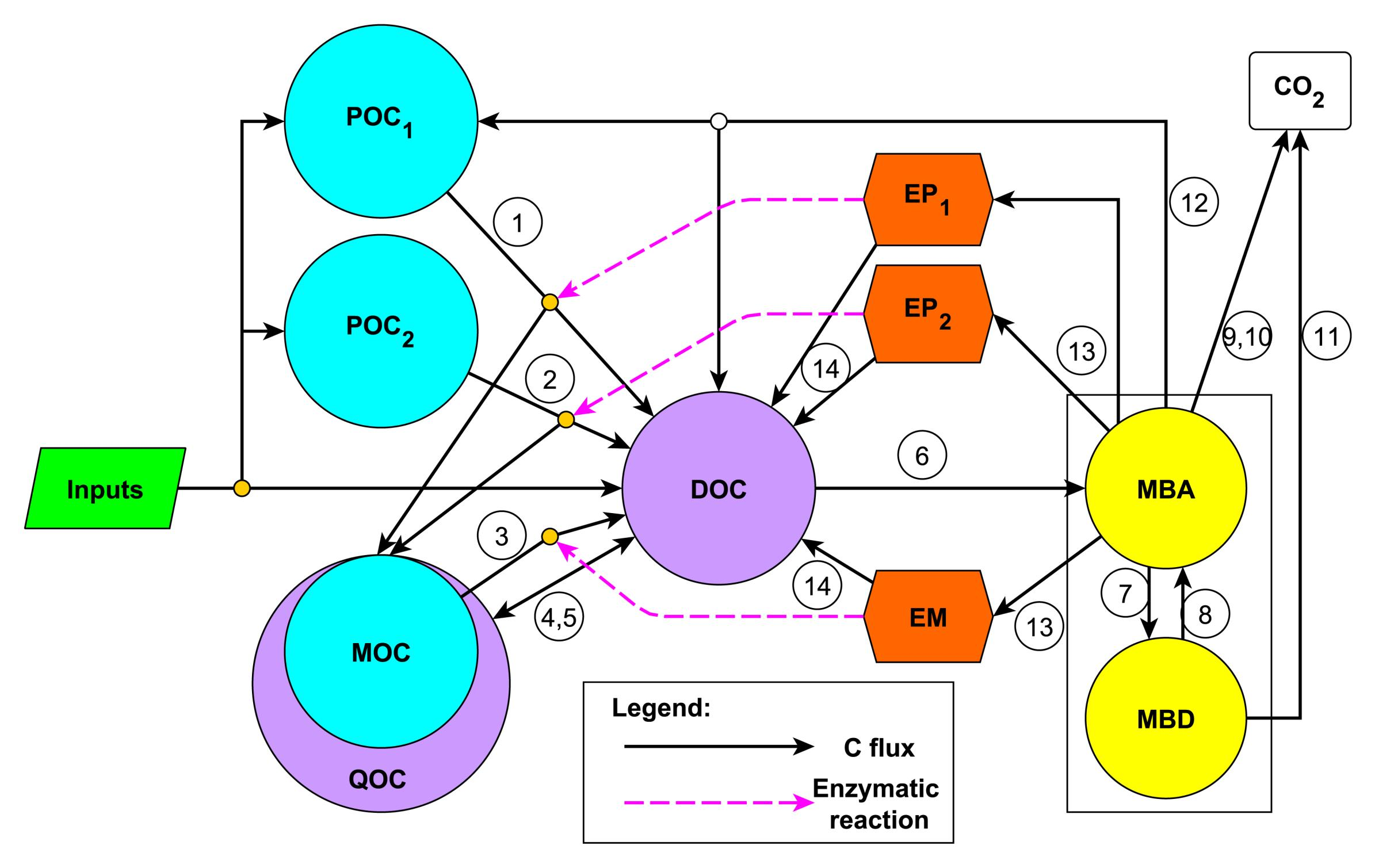Microbial ENzyme Decomposition model (MEND)